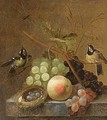 A Still Life Of Grapes, A Peach And A Dragonfly, Together With Blue Tits - (after) Johannes Hendrick Fredriks