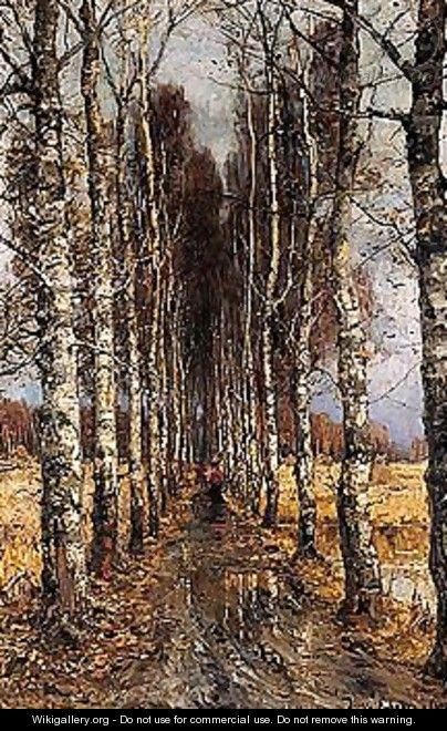Avenue of birch trees - Iulii Iul