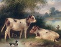 Calves And Ducks - Walter Hunt