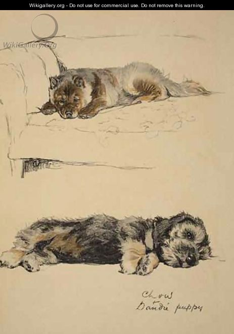 Chow and Dandie Puppy - Cecil Charles Aldin