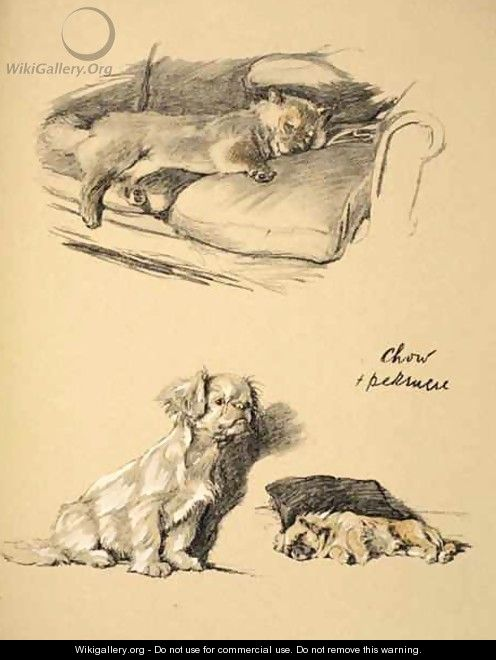 Chow and Pekinese - Cecil Charles Aldin