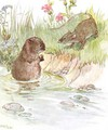 'Called on Squire Water Rat, old friend of the family', illustration from 'The Mischievious Mousie Book' - Anne Anderson