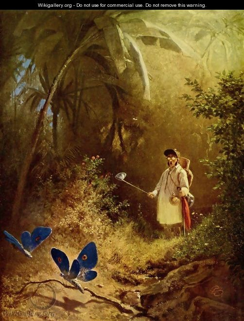 The Butterfly Hunter - Carl Spitzweg