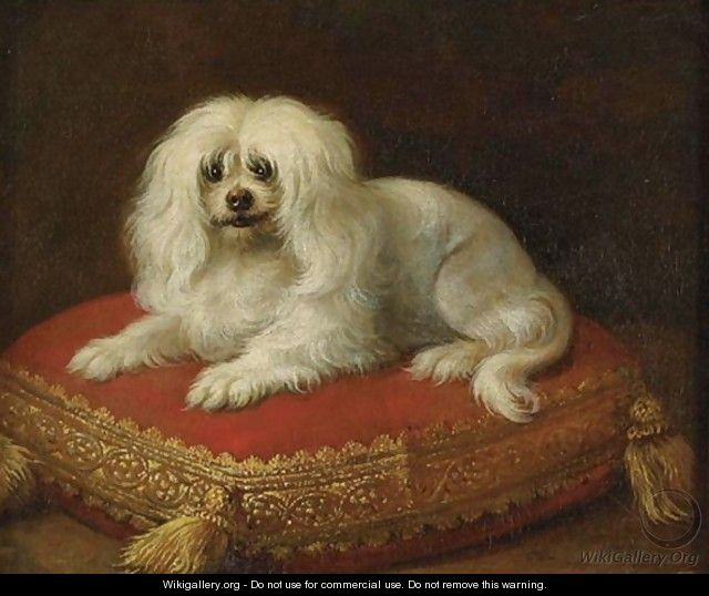 Portrait Of A Dog Seated On A Pillow - French School
