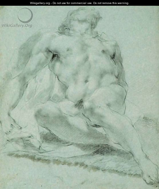 Male Nude - (after) Andrea Sacchi