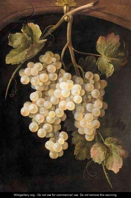 A Still Life Of A Bunch Of Grapes Hanging From A Hook - Dutch School