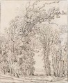 Study Of Trees - Francois Ryckhals
