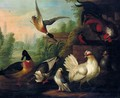 A Still Life With Chickens, Ducks, A Kingfisher And A Pigeon In A River Landscape - (after) Pieter Casteels III