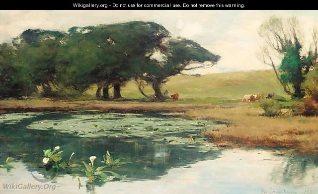 A Lily Pond In The Park, Castle Kennedy, Stranraer - David Farquharson