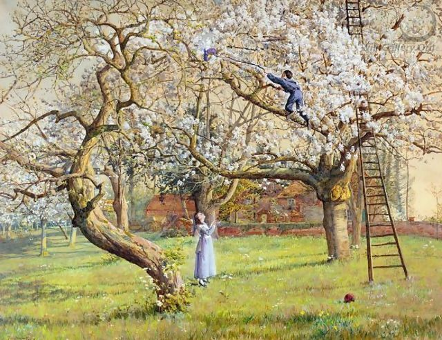 In A Cherry Orchard - Tristram Ellis