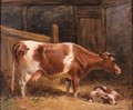 A Cow And Calf In A Stall - John Frederick Herring Snr