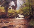 A Woodland Stream - Alexander Brownlie Docharty