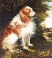 Spaniel In A Landscape - English School