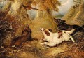 Spaniels And A Pheasant - George Armfield