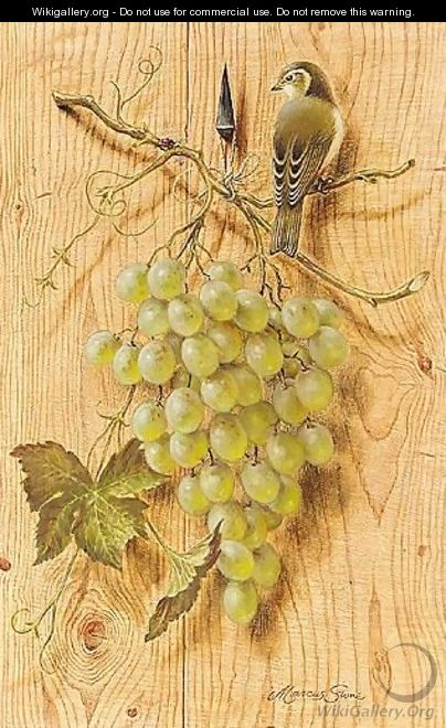 Bush Warbler With Grapes - Marcus Stone
