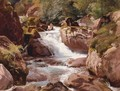 A View Of Waterfalls - Johann Gottfried Steffan