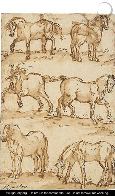 Six Studies Of Horses - Filippo Napoletano