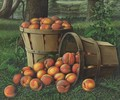 Baskets Of Peaches - Levi Wells Prentice