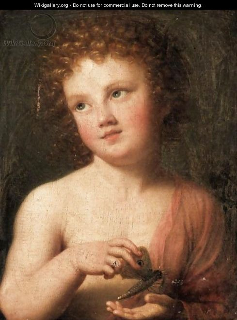 The Christ Child Holding A Butterfly - (after) Mengs, Anton Raphael