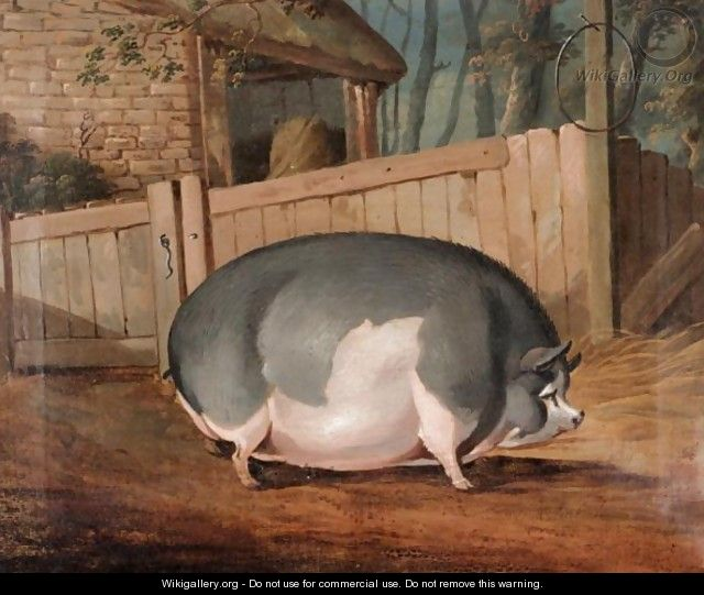 The Yorkshire Sow - J.B. Everard