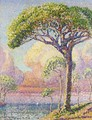 Un Pin - Henri Edmond Cross