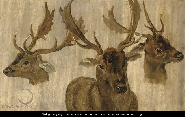 Three Head Studies Of A Roebuck - Jan, the Younger Brueghel