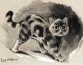 Study Of A Kitten - Louis Wain