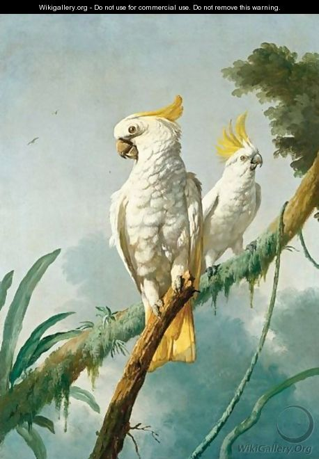 A Pair Of Sulphur-Crested Cockatoos - (after) Jacques Barraband