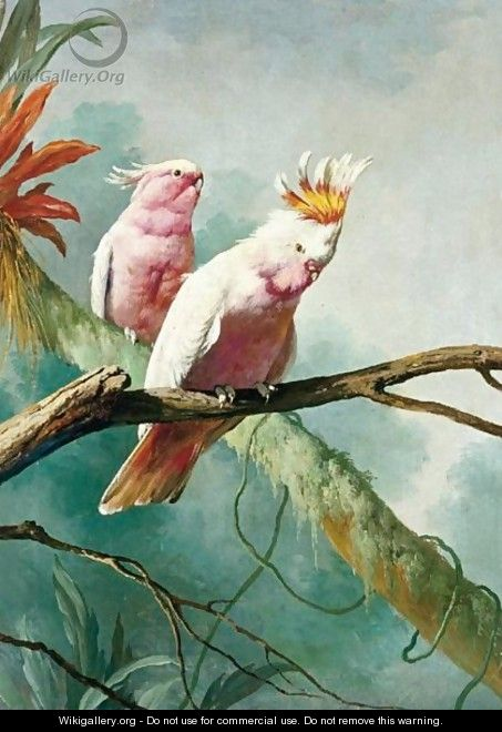 A Pair Of Leadbeaters Cockatoos - (after) Jacques Barraband