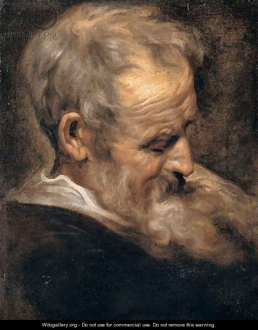 Portrait of an old man - (after) Dyck, Sir Anthony van