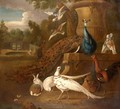 Peacocks, White Pheasants, Doves, A Hen, A Cockerel, A Rabbit Together In A Parkland Landscape - (after) Pieter Casteels III