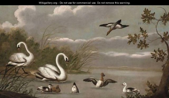 A River Landscape With Swans And Ducks - (after) Pieter Casteels III