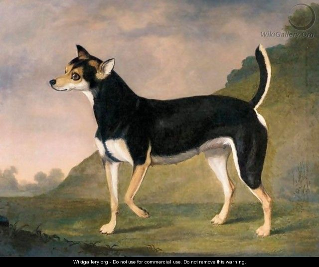 A Terrier In A Landscape - Francis Sartorius