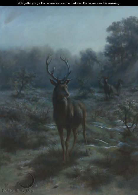King Of The Forest - Rosa Bonheur