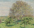Le Grand Noyer Au Printemps, Eragny - Camille Pissarro