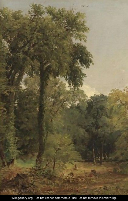 A Stand Of Trees - Jasper Francis Cropsey
