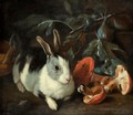 A Forest Floor With A Rabbit And Mushrooms - Franz Werner von Tamm