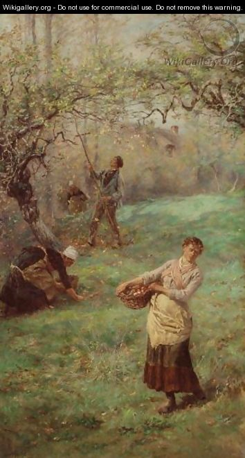 Picking Cider Apples, Normandy - William John Hennessy