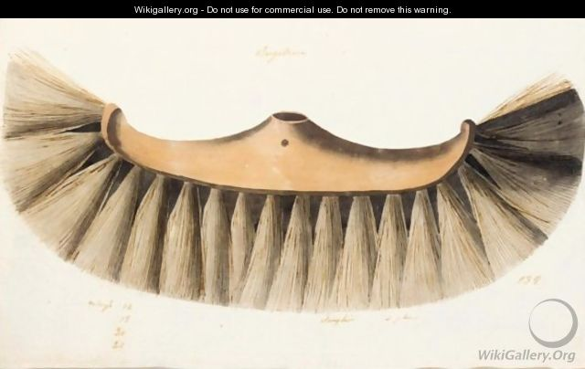 Design For The Head Of A Floor Brush - French School