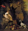 Still Life With Parrots, A Jay, A Woodpecker And A Finch, Together With A Spaniel And Various Fruits In A Parkland Setting - (after) Jakob Bogdany