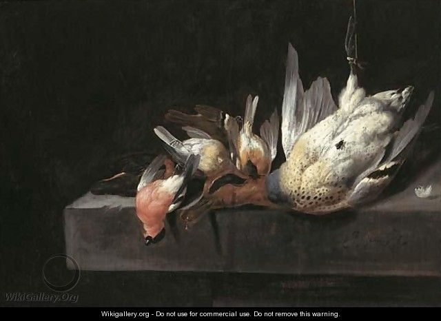A Still Life With Birds And A Duck On A Stone Ledge - Jan Vonck