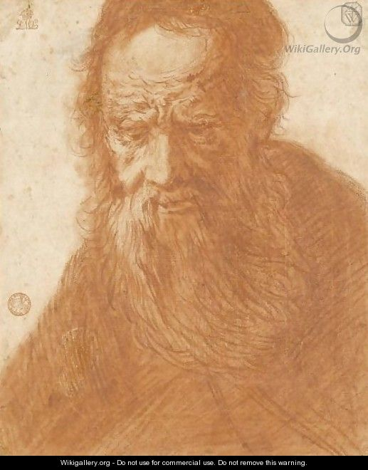 Head Of A Bearded Old Man - (after) Jacques Des Rousseaux