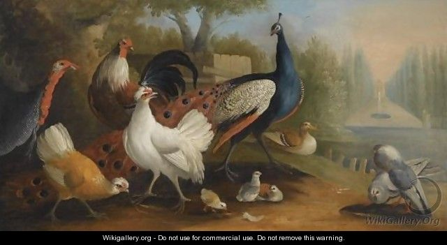 A Peacock, A Turkey, Chickens And Doves In A Garden Setting - (after) Pieter Casteels III