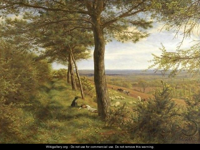 Firs And Furze - James Thomas Linnell