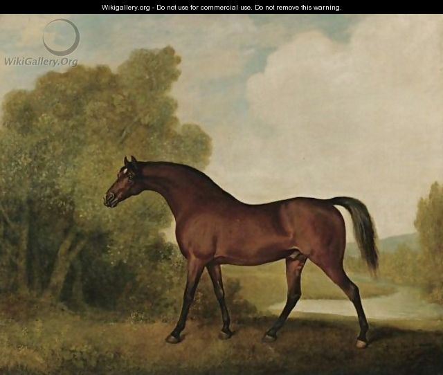 Ambrosio, A Bay Stallion, The Property Of Thomas Haworth - George Stubbs