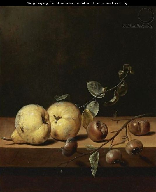 Quinces And Medlars On A Table Ledge - Jan Jansz. Van De Velde