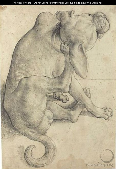 Study Of A Seated Dog Scratching Himself - German School
