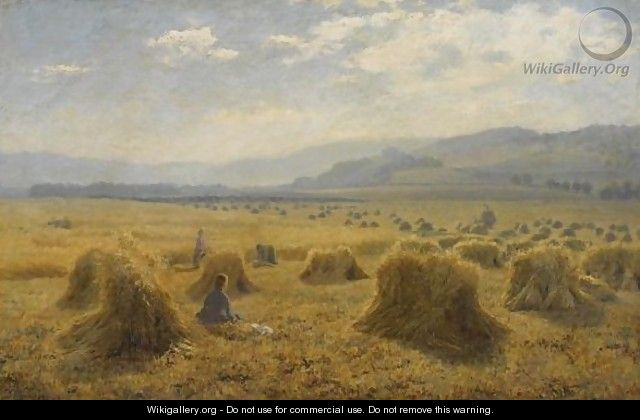 The Haymakers - Duncan Cameron