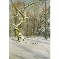 Tracks Through The Forest - Peder Monsted