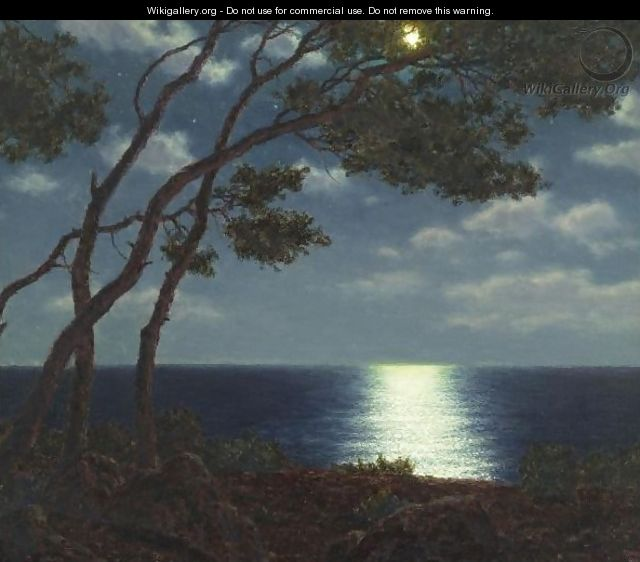 Moonlight On The Water - Ivan Fedorovich Choultse